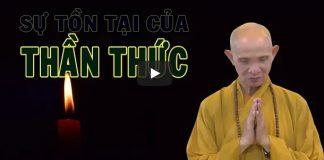 su-ton-tai-cua-than-thuc-thich-giac-hanh
