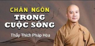 thich-phap-hoa-chan-ngon-trong-cuoc-song