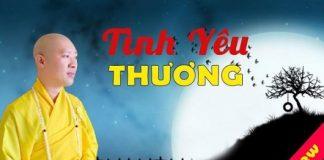tinh-yeu-thuong-thich-thien-thuan