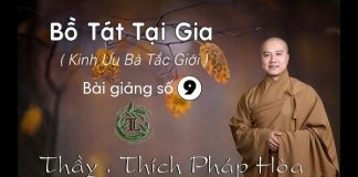bo-tat-tai-gia-phan-9-thich-phap-hoa
