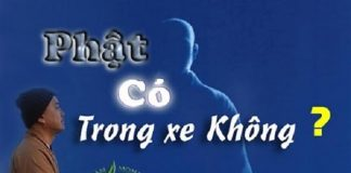phat-co-trong-xe-khong-thich-phap-hoa