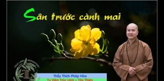 san-truoc-canh-mai-thich-phap-hoa