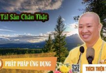 tai-san-chan-that-thich-thien-thuan