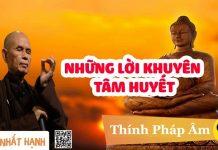 nhung-loi-khuyen-tam-huyet-thich-nhat-hanh