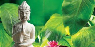nhung-loi-phat-day