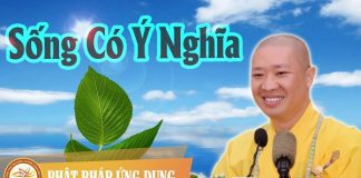 song-co-y-nghia-thich-thien-thuan